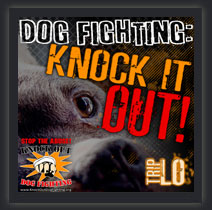 Dog Fighting - Knock it Out!